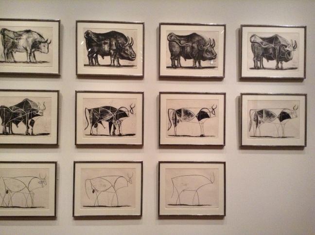 plain-bull